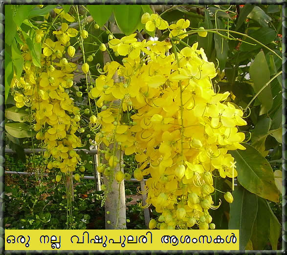 Vishu greetings 2014